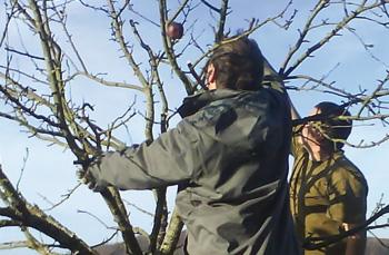 ESAT de Villersexel
